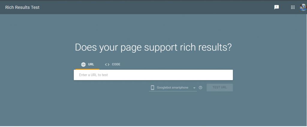 Google Rich Test result